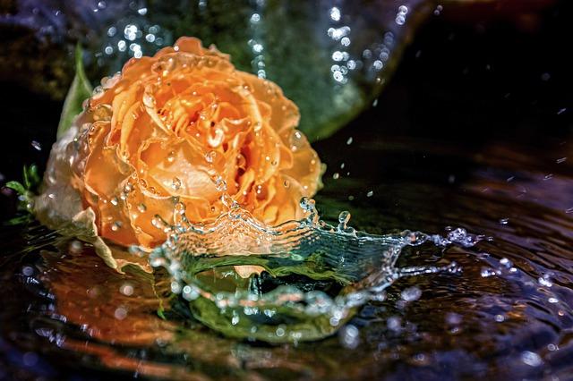 eau qui purifie